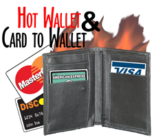 Hot Wallet and Card to Wallet Combo